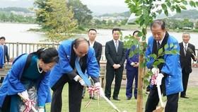 阮春福總理偕夫人和自民黨幹事長、日越友協聯盟主席二階俊博在紀之川市共同種下櫻花樹以記取這次特別的事件。(圖源:VOV)