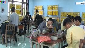 俄羅斯每年將接收2萬名越南勞工。(圖源:VTV)