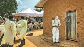 在剛果(金)東部的馬巴拉科,防疫人員在一處曾發現埃博拉病例的房屋消毒。(圖源:新華社)