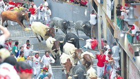 參加奔牛節的觀眾躲避牛群衝撞。(圖源:AFP)