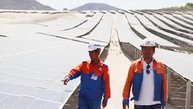 平順省綏豐縣的太陽能光電發電廠已於今年5月底投入運行。