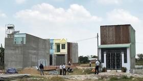 在平政縣農業地違章建設的工程。