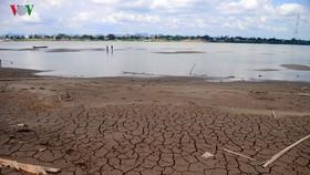 圖為泰國東北部湄公河水位創新低。(圖源:VOV)