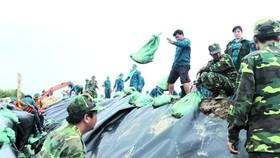 堅江省加護堤壩防海浪。(圖源:互聯網)