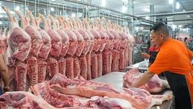 本月8日,生豬的售價每公斤為3萬6000至3萬9000元,比近日最低價格上升每公斤約6000至9000元。(示意圖源:互聯網)