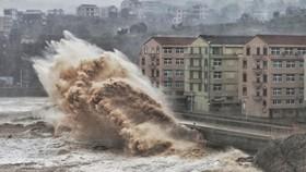 """8月10日,颱風""""利奇馬""""直撲中國沿海省市,出現狂風暴雨,浙江、上海、江蘇3省遭受重創。(圖源:AFP)"""