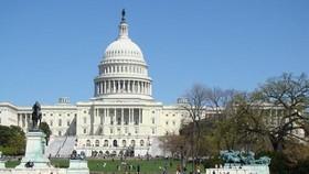美國政府12日頒佈了修訂後的《瀕危物種法案》實施條例,招致強烈批評。(示意圖源:互聯網)