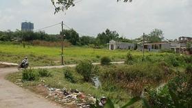 本市南面都市區某項目的農業用地。