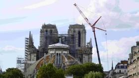 巴黎聖母院屋頂和塔尖被燒毀。