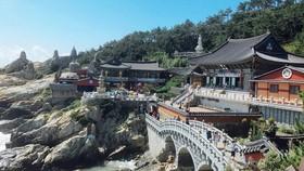 韓國著名景點之一的海東龍宮寺。(示意圖源:互聯網)