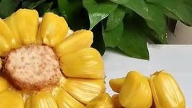 菠蘿蜜(圖源:互聯網)