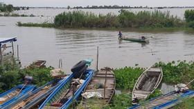 前江洪水水位已超過1級警戒線。(圖源:寶斗)