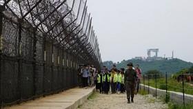 遊客正在體驗非軍事區徒步遊,步道周圍鐵絲網環繞。(圖源:互聯網)