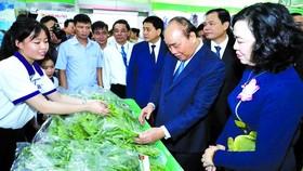 阮春福總理瞭解農業成果展品。(圖源:越通社)