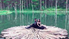 """Đà Lạt: Xử lý Khu vườn bí mật """"chui"""" trên hồ Tuyền Lâm"""