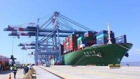Tàu container CSCL Star có trọng tải 160.000 tấn với sức chở 14.000TEU cập cảng Cái Mép tháng 10-2015. Ảnh: QUANG KHOA