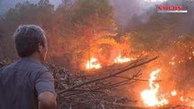 Nắng nóng liên tiếp kéo theo nguy cơ cháy rừng ở miền Trung
