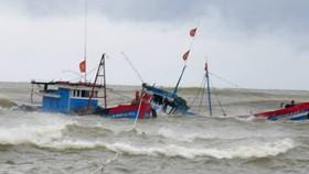9 tàu bị chìm vì bão Podul, đã cứu được 60 người