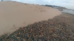 Khu vực bãi đá 7 màu và bãi rêu Bình Thuận bị xâm hại.