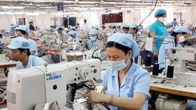 A garment plant in HCMC (Illustrative photo: SGGP)