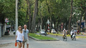 143 trees will be chopped down in Ton Duc Thang street, HCMC for building of Thu Thiem 2 bridge
