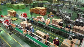 Workers package soya milk products at the Vietnam Soya Milk Products Company in the Tien Son Industrial Zone in the northern province of Bac Ninh. Prime Minister Nguyen Xuan Phuc has reminded the province of Bac Ninh to develop itself into a hi-tech indus