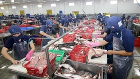 Pangasius, vegetable prices highly hike in Mekong Delta