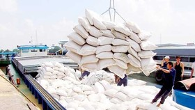 Rice bags are loaded aboard for export