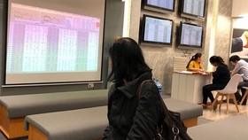 An investor follows transactions at Saigon Securities Inc (SSI) in Hanoi (Photo: VNS)