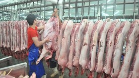 Pork sold at Hoc Mon wholesale market (Photo: SGGP)