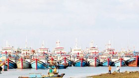 Construction of new seaport in Mekong Delta needs US$4.1 billion