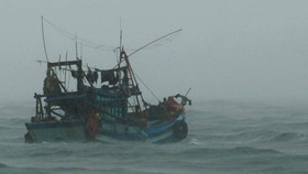 A fishing boat moving to shelter in Ca Mau province (Photo: SGGP)