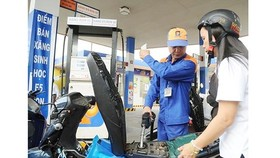 Transport group falls 3.04 percent in January 2019, thanks to gasoline price cut and discharge of fuel price stabilization fund. (Photo: SGGP)