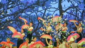 An art performance at the Hoa Ban Festival 2018 held in Điện Biên Province. — (Photo: baodienbienphu.info.vn)