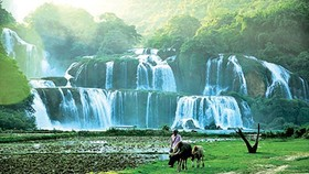 Ban Gioc waterfall in Cao Bang (Source: SGGP)