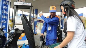 Petrol prices kept steadily