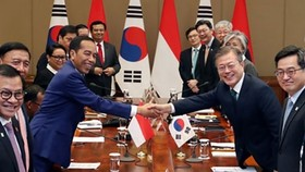 RoK President Moon Jae-in (right) and his Indonesian counterpart Joko Widodo (Source: Yonhap)