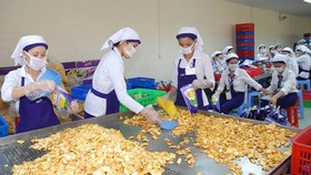 Taiwanese market has great demand for processed farm products. (Photo: SGGP)