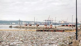 Waste clearing in Durban port, South Africa on April 28, 2019. Illustrative image (Source: AFP/VNA)