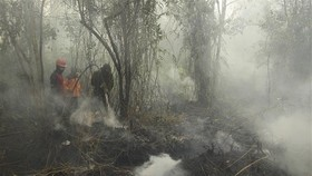 Smoke from a forest fire in Riau, Indonesia (Photo: Xinhua/VNA)