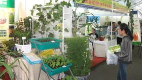 Khai mạc Hội chợ - Triển lãm Giống Nông nghiệp TPHCM