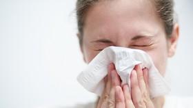 Châu Âu: Chưa dập được dịch cúm