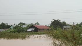 Mưa lớn, 30.000 hộ dân ở Đắk Lắk đang bị cô lập