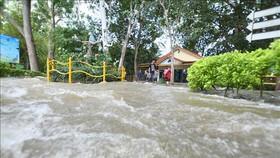 Cảnh ngập lụt sau những trận mưa lớn ở Mandya, bang Karnataka, Ấn Độ, ngày 11-8. Ảnh: THX/TTXVN