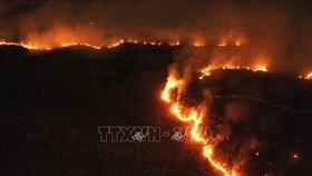 Các đám cháy tại rừng mưa Amazon ở bang Tocantins, Brazil, ngày 17-8