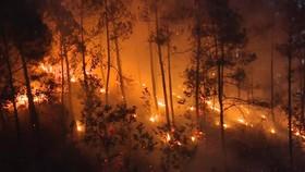 VIDEO: Đánh vật chữa cháy rừng liên tiếp tại Thừa Thiên – Huế