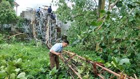 Hiện trường cột ăng-ten Đài Truyền thanh - Truyền hình huyện Hương Khê bị bão làm đổ sập