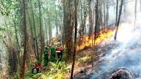 Lực lượng chức năng tham gia dập lửa trong vụ cháy rừng ở khu vực núi Nầm, giáp ranh giữa xã Sơn Châu và Sơn Thủy, huyện Hương Sơn, tỉnh Hà Tĩnh, ngày 8-7-2019