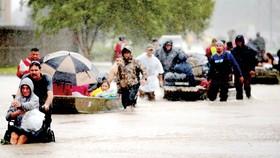 Bão Harvey gây ngập lụt ở Texas