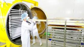 Sản phẩm mít sấy của Vinamit được chứng nhận Organic quốc tế từ dây chuyền chế biến, đóng gói tại nhà máy và vùng nguồn nguyên liệu